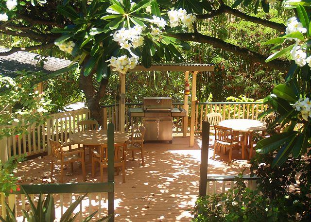 Poipu Plantation Aloha Aina 160