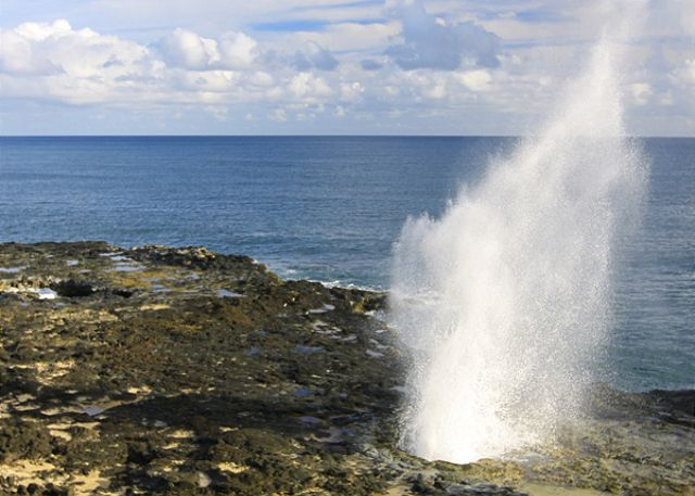 Nearby Spouting Horn