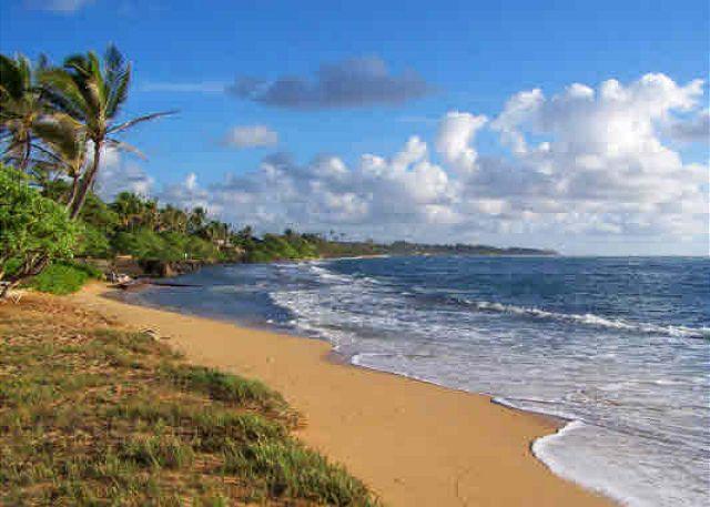 Waipouli Beach Resort B404 120