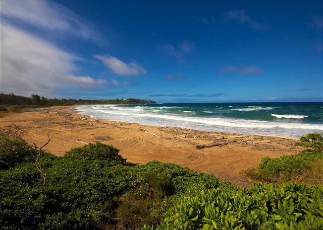 Waipouli Beach Resort B202 150