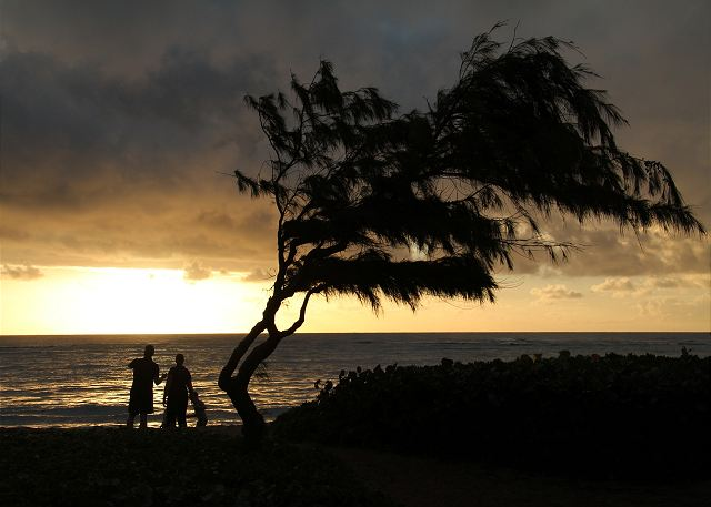 Waipouli Beach Resort H304 200