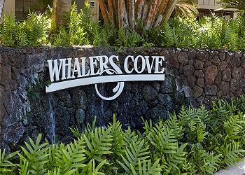 Whalers Cove  # 231 300