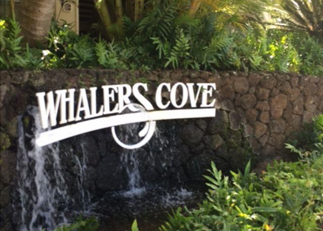 Whalers Cove  # 231 230
