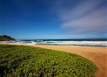 Waipouli Beach Resort H206 220