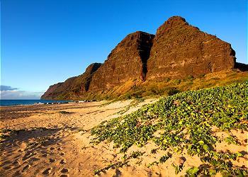 Waipouli Beach Resort A301 290