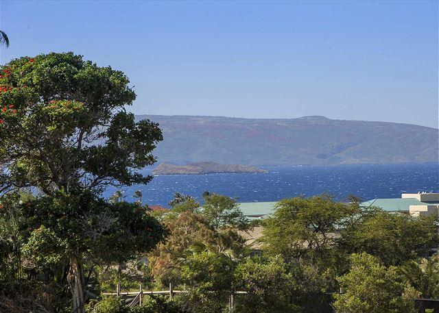 Wailea Ekolu Views