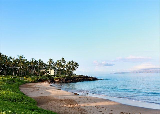 Ulua Beach: Palms at Wailea 1503