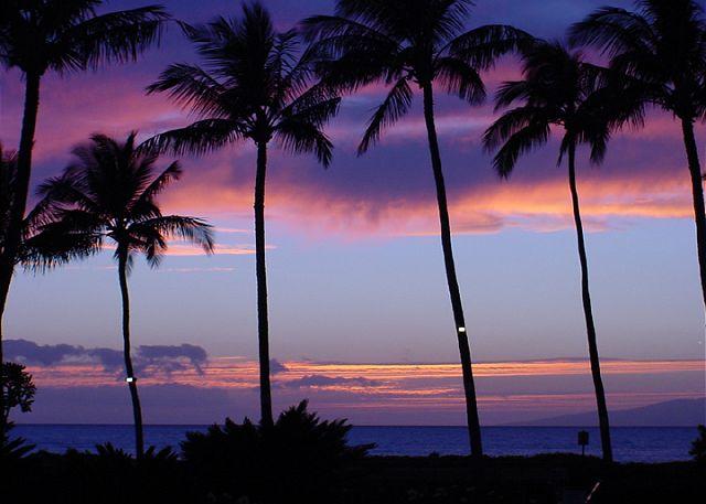 Kamaole Beach #3 is across the street from Maui Kamaole