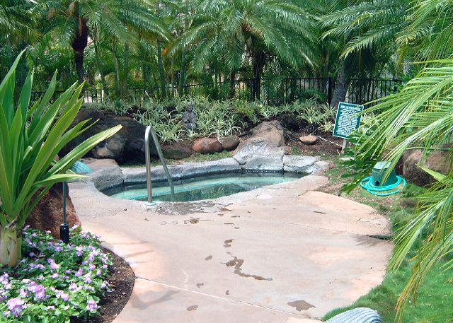 Hot tub at pool area #2