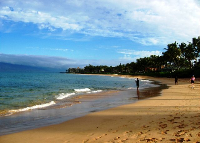 Keawakapu Beach; a short stroll from the Palms at Wailea!