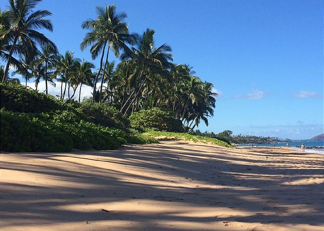 White sandy beach across the street.