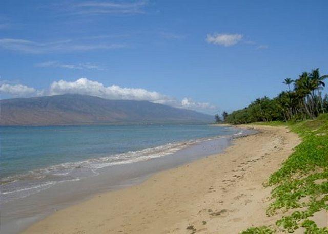 Beach fronting  Waiohuli Beach Hale