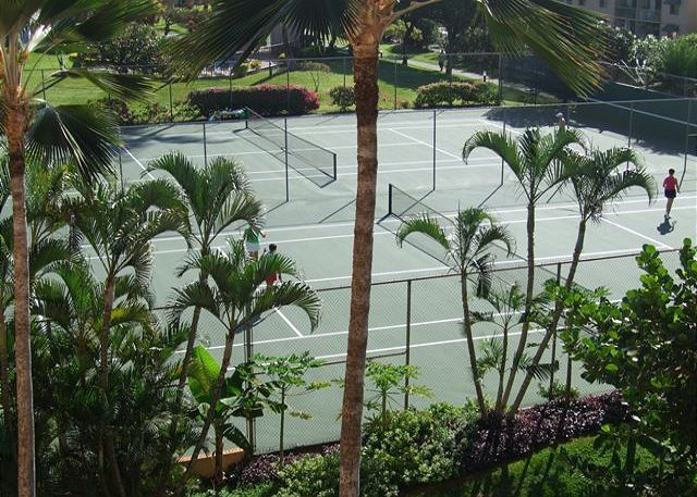 2 of 6 Championship Tennis Courts