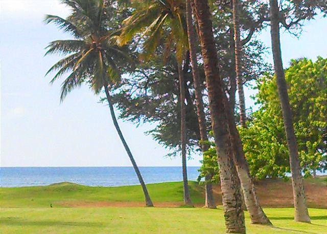 View From Leinaala #104