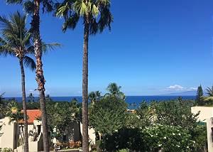 Palms at Wailea #13521101