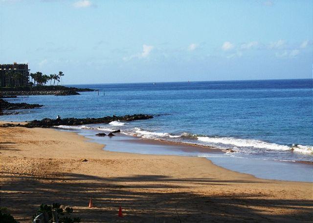 Kamaole Beach #3 Across the Street