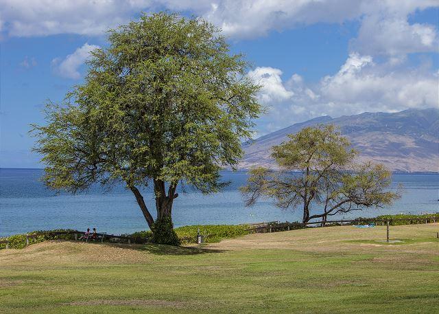Maui Parkshore is across the street from Kamaole Beach Park III