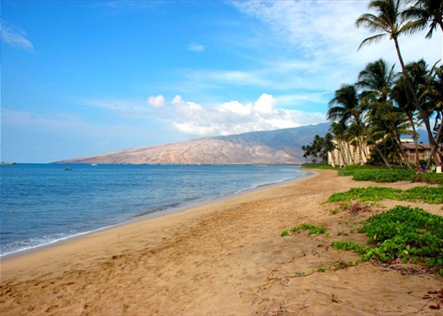 The Kihei Kai Complex is situated on Sugar Beach