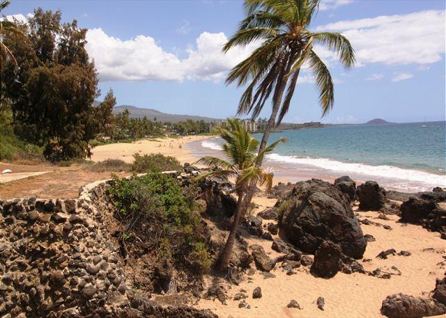 Hale Ili Ili #D  Kamaole Beach 1  World Farmous