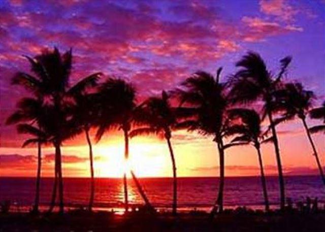 Maui Sunsets