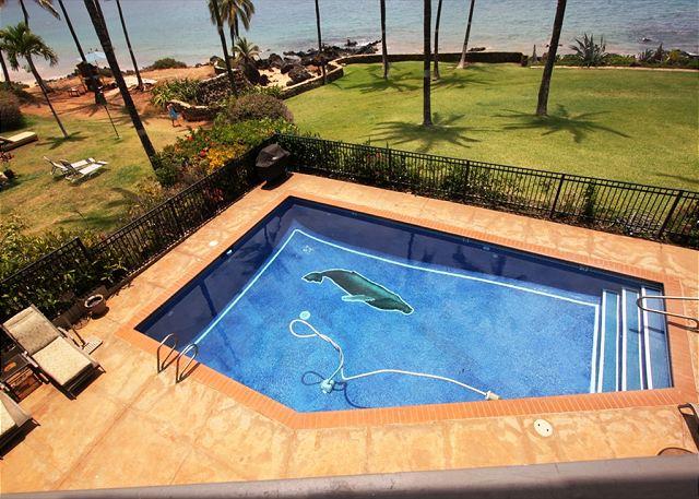 Hale Ili Ili #D  Oceanfront Pool