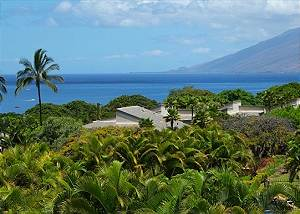 Wailea Ekolu #1352804  Great oceanviews  Open Layout