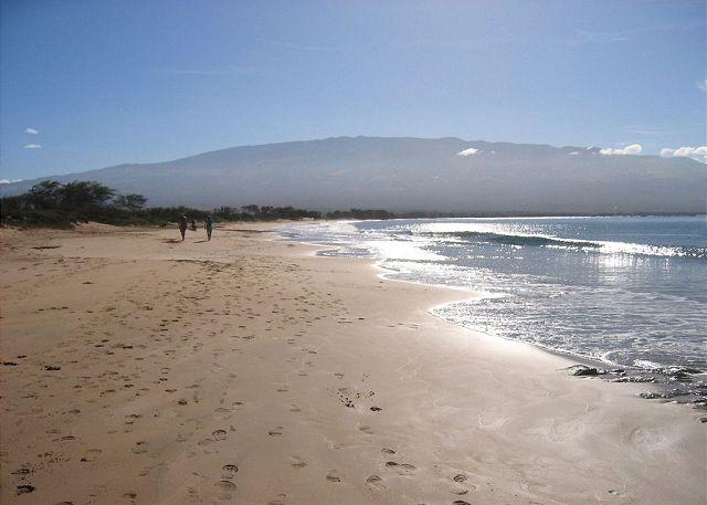 Miles of Sandy Beach Across from The Maui Beach Resort
