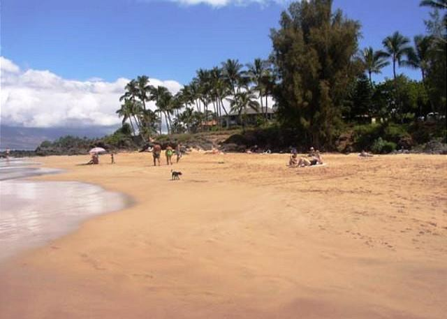Charley Young Beach across the street from Maui Vista