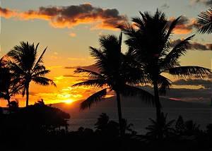 Maui Kamaole #J1352120