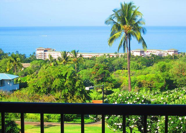 Wailea Ekolu #1108  View From Lanai