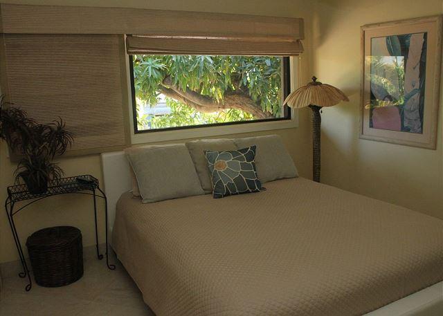 Queen size bed in second bedroom
