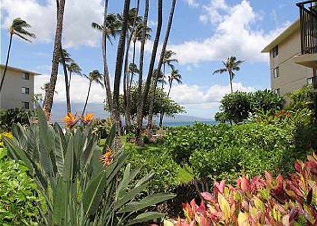 Kanai A Nalu Resort 108 | Photo