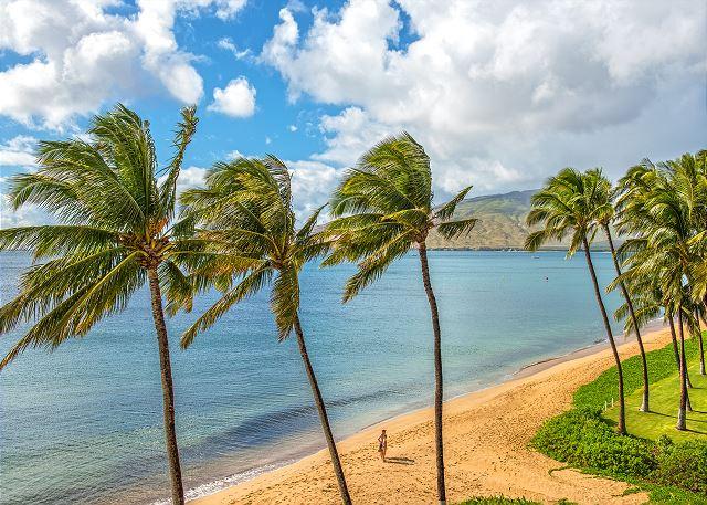 Kihei Beach Resort 503   Photo