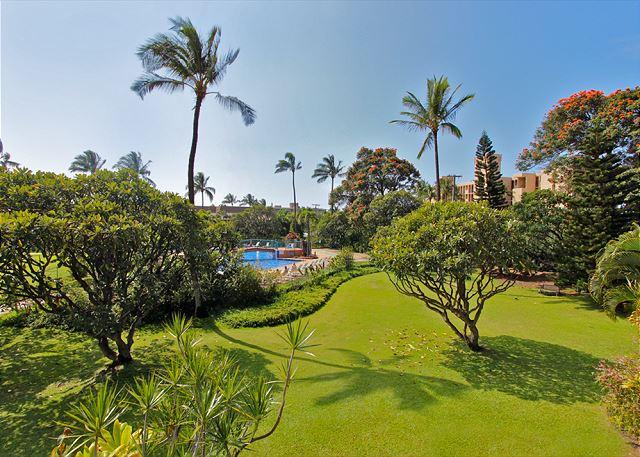 Koa Resort 1J | Photo
