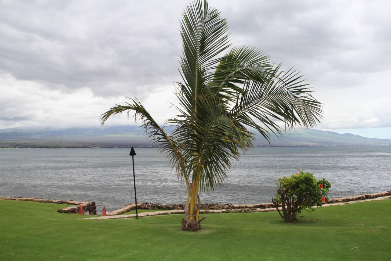Maalaea Kai Resort 117 | Photo