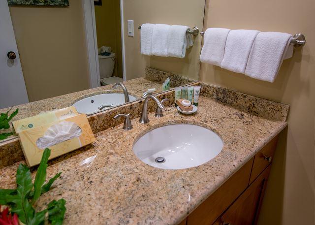 Granite sink in second bathroom