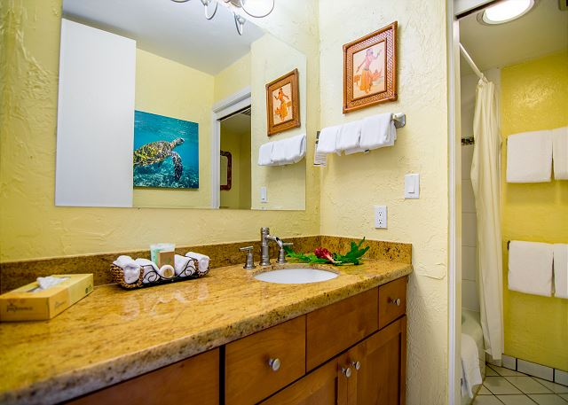 Bathroom with granite top and step in shower