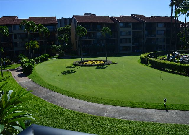 Putting green view from the lanai