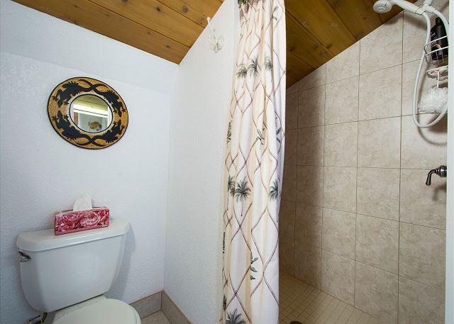 2nd bathroom has shower too!