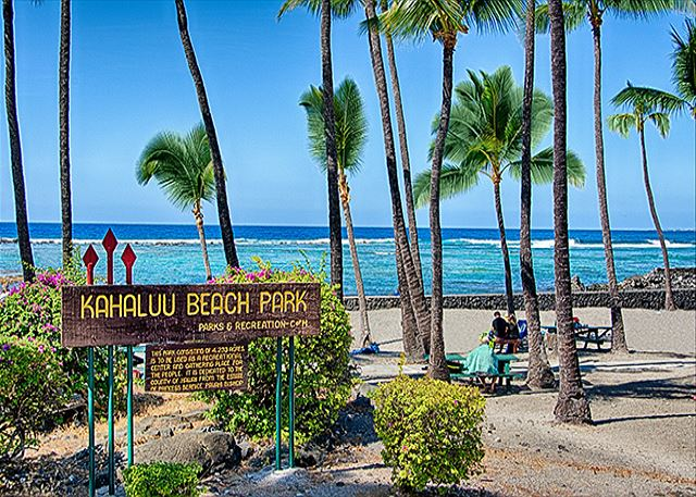 Famous Kahaluu Beach is right across the street from the complex!