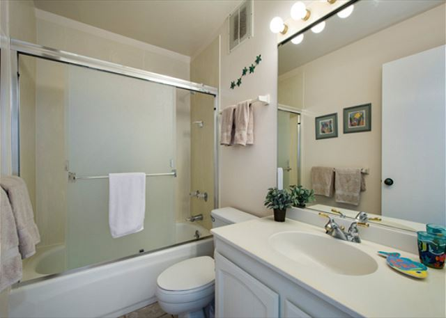 Guest bathroom features tub/shower combo