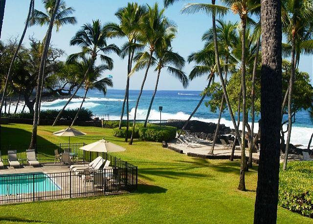 Gorgeous grounds of the Kona Isle