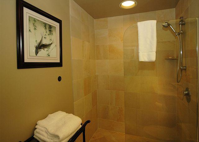 Guest Master Suite Bathroom