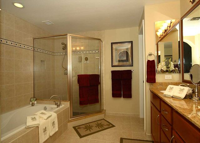 Master bathroom with large walk in bathroom