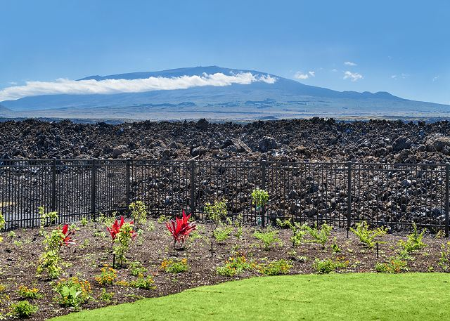 Mauna Kea Views