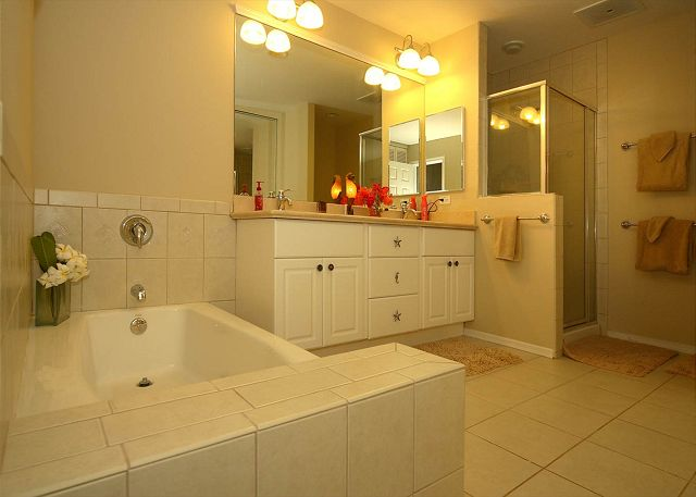 Master Bathroom with standing shower and bath tub