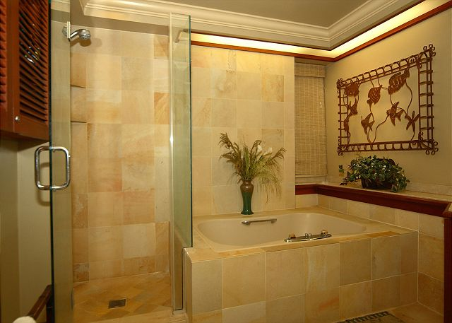 Large Bath Tub with stand up shower and double vanity