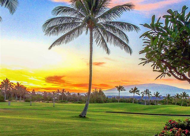 Enjoy a day of golf!!
