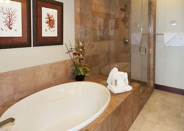 South Master Bath
