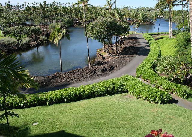 Lawn fronting K bldg. with walk way to Beach Club through bird sanctuary.